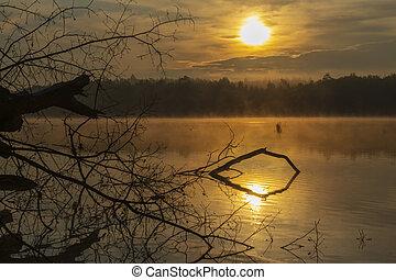 čech, rybník, republika, nad, východ slunce, slunit se, trebon