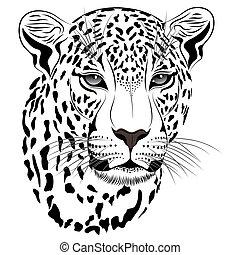 čepobití, leopard