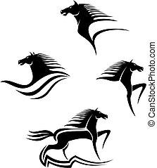 Černé koně symboly