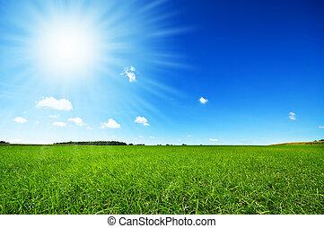 Čerstvá zelená tráva s modrou oblohou