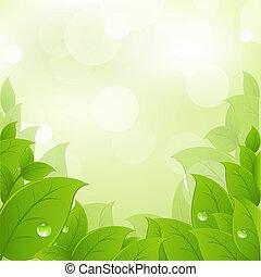 Čerstvé a zelené listí