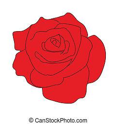 červené šaty grafické pozadí, růže, neposkvrněný
