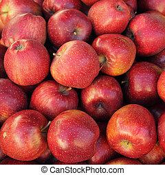 Červené jablka jako pozadí