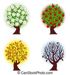 Čtyři roční období jablečnýho stromu.