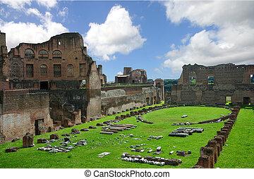 římský záhuba