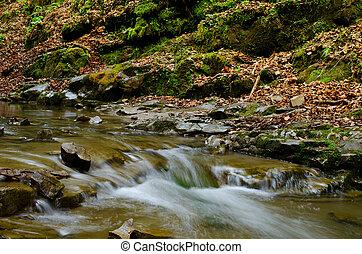 řeka, podzim, malý