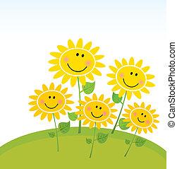 šťastný, slunečnice, zahrada, pramen