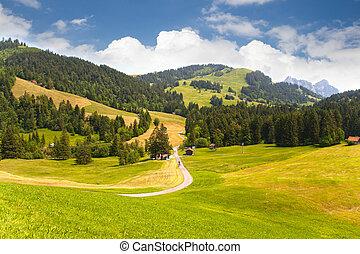 švýcarsko, údolí