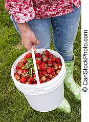 Žena držící paži čerstvé jahody