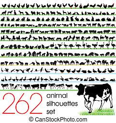 262, silhouettes, dát, animální