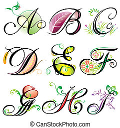 a-i, abeceda, základy