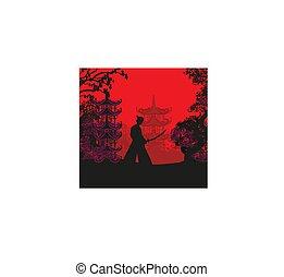 abstraktní, japonština, zápasník, samuraj, západ slunce, krajina