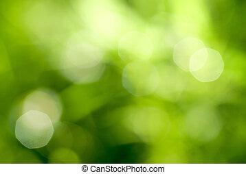 Abstraktní zelený, přirozený, zpětný zpětný pes