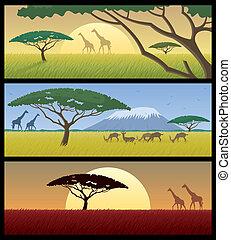 Africké krajiny