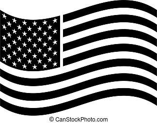 Americká vlajková klinika