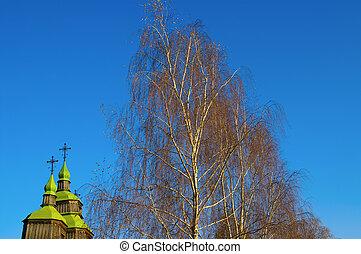 autumn., birch., církev