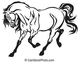 běh, kůň