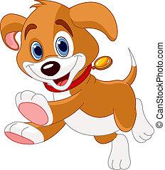 Běhající legrační štěně