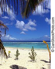 Beach scéna