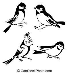 Birds siluette na bílém pozadí, vektorová ilustrace