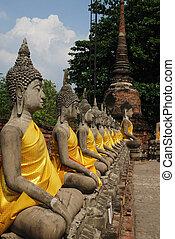 buddha, seřadil, sochy, ayutthaya
