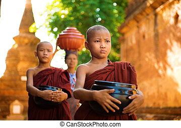 buddhista, mnisi, myanmar