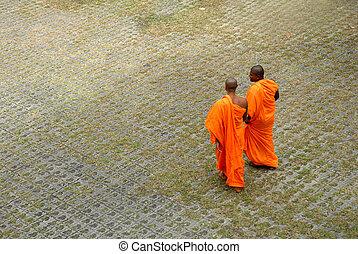 buddhista, mnisi