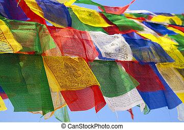 buddhista, nepál, boudhanath, prapor, chrám, mnich