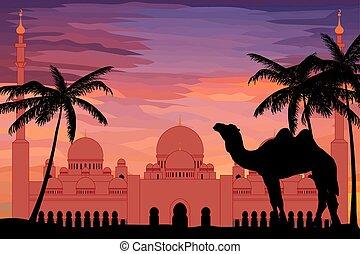 byt, móda, zayed, mešita, šejk, západ slunce, důležitý