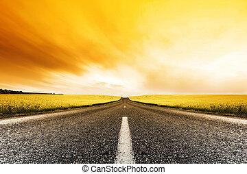 Canola Road západ slunce