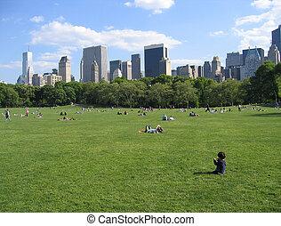 central park, nový jork