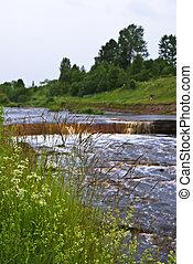 chlupatý, pastvina, mladický řeka
