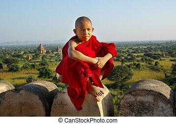 chrám, buddhista, mládě, grafické pozadí, mnich