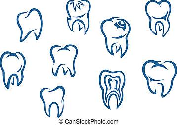 dát, lidská bytost zuby