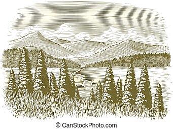 Dřevěná divočina