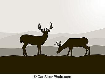 Deer siuette v divočině