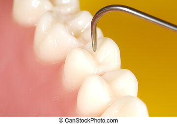 Dentální zkouška
