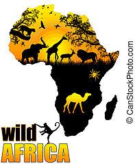 divoký, plakát, afrika