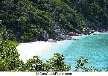 divoký, similan, břeh, ostrov