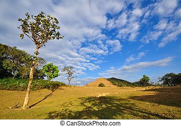 divoký, thajsko, severní