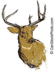 divoký, vektor, jelen, ilustrace