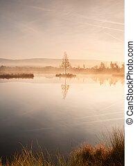Dopolední ráno s klidnou vodou, jezero