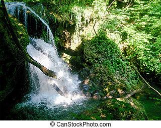 druh krajinomalba, kopyto, river., les, řeka, hory