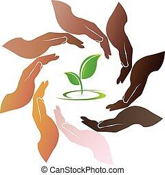 emblém, ruce, dokola, bylina