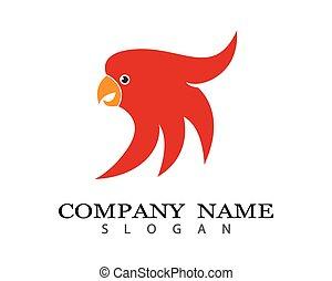 emblém, vektor, papoušek, ilustrace