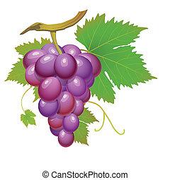 Fialové víno