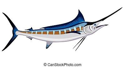 fish, meč