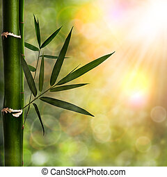 grafické pozadí, abstraktní, blbeček, bambus, listoví