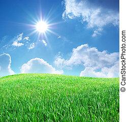 Grass a modrá obloha