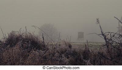 honba, kopyto, popředí, pastvina, slepý, bojiště, mlha, krajina